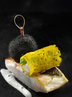 Line-caught sea bass and beetroot croquette, tube of sardine and Norway lobster with Kaffir lime