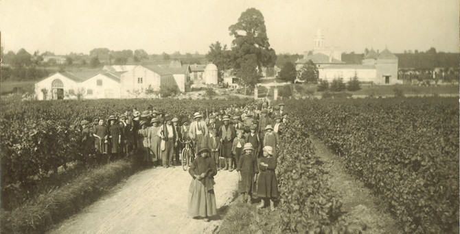 Château Bonnet and vineyard 1915